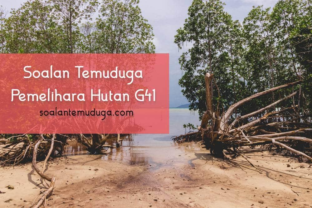 Soalan Temuduga Pemelihara Hutan G41